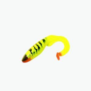 Gator Catfish